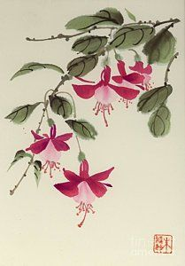 Fuschia Pink Art Print by Yolanda Koh Sumi E Painting, Japan Painting, Pink Painting, Watercolor Artists, Watercolor Design, Watercolor Flowers, Flower Tattoo Designs, Flower Tattoos, Flower Designs