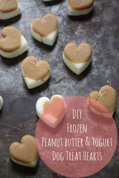 Valentine's Pets: DIY Natural Frozen Dog Treats | 17 Apart: Valentine's Pets: DIY Natural Frozen Dog Treats