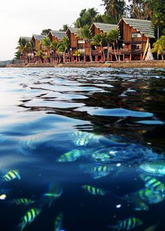 Pearl Farm  is located in a secluded cove on exotic Samal Island off Davao City, in the Southern Philippines, this world class beach resort is set among swaying coconut palms and fringed by a glittering white sand beach.