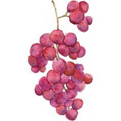 Pour Me A Wine - Elements - Watercolor Grapes