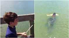 WATCH: Cunning alligator steals child's fish from fishing rod in this viral video
