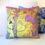 Geology: USGS Map Pillow Covers (in Handmade Science for the Holidays)