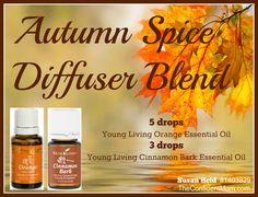 Forget the toxic candles this year and help your family fight off germs all while keeping your house smelling yummy! #youngliving | Cinnamon Bark & Orange Essential Oils | For more info or to order www.EssentialOilsEnhanceHealth.com