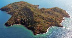 Mayotte dans le dernier guide de la ligue de protection des oiseaux