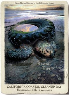 California Coastal CleanUp Day: Radial Turtle, Coastal Preservation Campaign, Goodby Silverstein & Partners, California Coastal Commission, Print, Outdoor, Ads