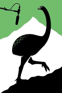 Glenn Jones | Graphic Designer, Illustrator, Artist