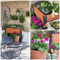 You can grow your own way with smart gardening ideas from Handmade Mood's Amanda Gentis. @hayneedle