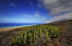 Cofete - Explore thanks Pay a visit to Fuerteventura and encounter a flawless coastline with emerald green waters and well…