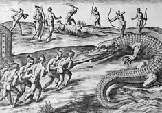Engraving by Theodor de Bry After Crocodile Hunting by Jacques Le ...