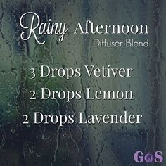 The combination of Vetiver, Lemon and Lavender in this Rainy Afternoon Diffuser Blend will help you relax on the perfect rainy day. by nell