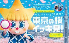 """東京スカイツリーで""""空花見""""東京の桜<2016.3.1〜4.10>"""