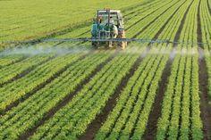 Autorizada la suscripción de una adenda al convenio de Enesa y Agroseguro para los Planes de Seguros Agrarios Combinados 2016