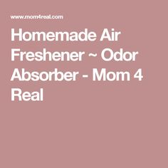 Homemade Air Freshener ~ Odor Absorber - Mom 4 Real