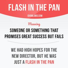 """Flash in the pan"" is someone or something that promises great success but fails. Example: We had high hopes for the new director, but he was just a flash in the pan."