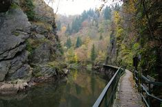 Czech Republic, Prague, Travelling, Places To Go, Trips, River, Country, Outdoor, Viajes