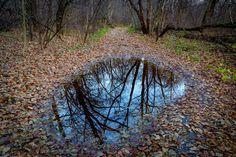 Search photos by Pavel Klimenko