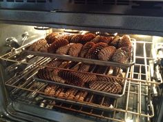 Pinecone Decor: How to clean and dry pine cones for crafts.put them on a foil-covered baking sheet and spread the pine cones out in a single layer. Bake them in a pre-heated oven at 200 degrees for about minutes. Pine Cone Crafts, Fall Crafts, Holiday Crafts, All Things Christmas, Holiday Fun, Christmas Time, Christmas Picks, Christmas Snowman, Holiday Ideas