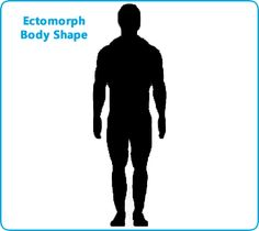 Did You Know There Are Seven Typical Male Body Shapes The