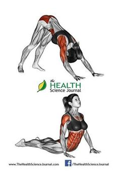 © Sasham | Dreamstime.com – Fitness-Yoga exercising. Indian push-ups. Female