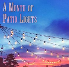 The month of May is a great month to celebrate. Why not take the party outside and keep it going well past sunset with patio lights? From restaurants to wedding receptions, make it an event to remember with patio lights from 1000Bulbs.com! #lightdifferently String Lights Outdoor, Patio Lighting, Wedding Receptions, Patio Ideas, Backyard Landscaping, Restaurants, Room Decor, Gardening, Sunset