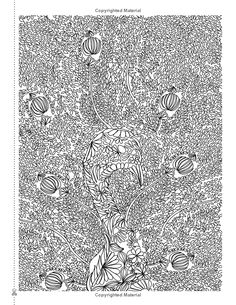 Dream Catcher Life On Earth A Powerful Inspiring Adult Colouring Book Celebrating The