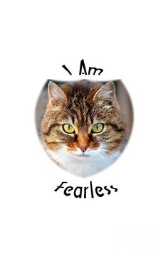 "Interior #design wall art for home, office and businesses with #brown colors. Positive affirmation:""I am fearless"" with photo of a cat."