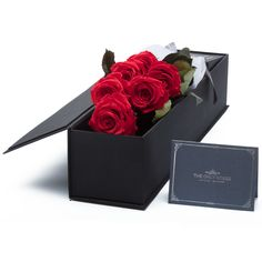 """Excellent """"long stem roses for cut flowers"""" detail is available on our website. Check it out and you will not be sorry you did. Big Flowers, Fresh Flowers, Floribunda Roses, Best Roses, Every Rose, Red Rose Bouquet, Types Of Roses, Preserved Roses, Rose Shop"""