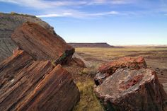 One of the world's largest and most colorful concentrations of petrified wood is found in Arizona's Petrified Forest National Park.  (Photo of Petrified Logs by Petrified Forest Ranger, via Flickr's NPS Photo, public domain.)  I remember that my parents purchased a beautiful set of bookends made from polished petrified wood - I wonder what ever happened to them?