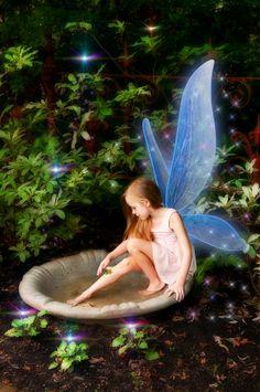 Fairy Light Play Photographer