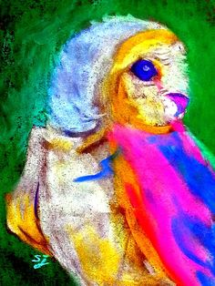 Funky Barn Owl Art Print. This funky owl, colorfully clad, dressed in his Sunday Best pink and blue, looks all set to paint the town red :)) Whimsical colorful funky wildlife & floral pop art fun paintings by Sue Jacobi - Sudha Jacobi, on http://fineartamerica.com/profiles/sue-j.html and www.sue-j.artistwebsites.com