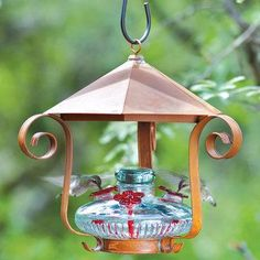 Parasol Bloom Shelter hummingbird feeder in Clear. Rustic tin cupola shelters a Bloom hummingbird feeder. This feeder holds of hummingbird nectar and measures 12 by Based on designs of antique hurricane lanterns, the Bloom feeder