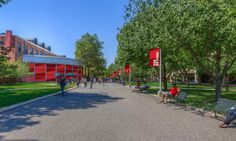 I came in strong, but other things happened. Stony Brook University, College Life, Sidewalk, Articles, Strong, Side Walkway, Walkway, Walkways, Student Life