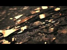 Fuse by Julianna Baggott - book trailer
