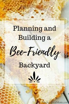Organic Gardening Planning and Building a Bee-Friendly Backyard via The Survival Mom -- Support the all-important bee by creating a bee friendly backyard or garden. Here are a few simple and budget friendly ideas. Organic Gardening, Gardening Tips, Gardening Courses, Beekeeping For Beginners, Raising Bees, Bee Farm, Backyard Beekeeping, Whole Foods Market, Save The Bees