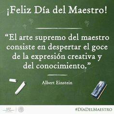 15 de Mayo: dia del maestro. Feliz dia les desea Luna!!!!!