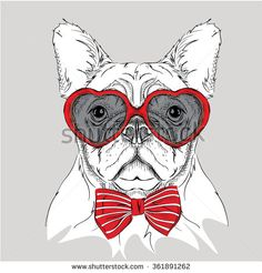 Picture of portrait of a dog with the heart shaped glasses.  Vector illustration.