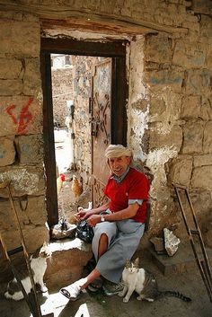 https://flic.kr/p/eeC4Z | Man feeding cats in the old town of Sanaa - Yemen | In the old town of Sanaa, this man gives food to the cats. © Eric Lafforgue  www.ericlafforgue.com