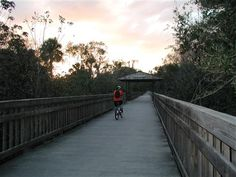 Cross Seminole Trail - By foot, by bike, by rollerblades, or by horse, this is the best way to see Oviedo, and other spots across the county. don't forget your 4-leg friends!  Cross Seminole Trail Photos - Seminole/Orange County Border - Lake Mary (Greenway Blvd.)