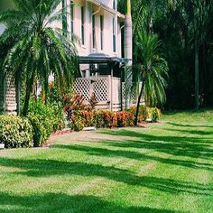We are a leading provider of lawn care services throughout the Fort Myers and surrounding area of Florida. Call 239-728-1999 to get commercial or residential lawn care services by the specialists. Lawn Maintenance Service, Lawn Service, Lehigh Acres, Lawn Care Business, Landscape Maintenance, Sanibel Island, Cape Coral, Fort Myers, Green Leaves
