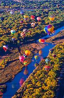 Hot air balloons flying low over the Rio Grande River just after sunrise, Albuquerque International Balloon Fiesta, Albuquerque, New Mexico USA. | Blaine Harrington III