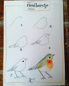 Super Robin Bird Sketch To Draw Ideas Bird Drawings, Animal Drawings, Easy Drawings, Drawing Sketches, Drawing Birds Easy, Sketching, Pixel Drawing, Drawing Lessons, Drawing Techniques