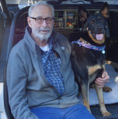 Safety Alert: How to save your pet from antifreeze poisoning David R. Gross