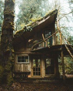 Beautiful hand built cabin in the Olympic rainforest. Cabins In The Woods, House In The Woods, Cabana, Beautiful Homes, Beautiful Places, Amazing Places, Cabins And Cottages, Log Cabins, Mountain Cabins