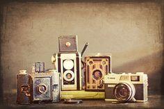 I love collecting vintage cameras.