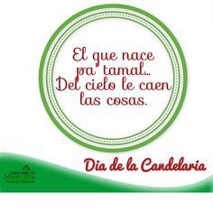 Dia de la Candelaria, tamales, el que nace pa tamal del cielo le caen las hojas