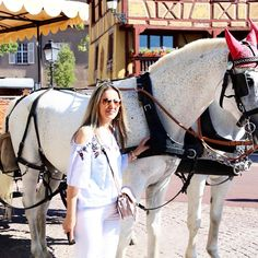 🎀Blogueira🎀 sur Instagram: Bom dia! #cute #beautiful #beautifulgirl#style #stylgirl #inspired #instafoto #instastyle #blogger #blog #colmar #colmarfrenchvillage… Horses, Inspired, Cute, Blog, Animals, Inspiration, Beautiful, Instagram, Style
