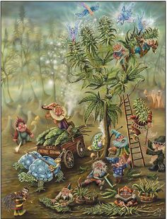 Gnomes of Fairy Hill