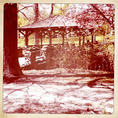 This gazebo is a great place to relax in Everhart Park