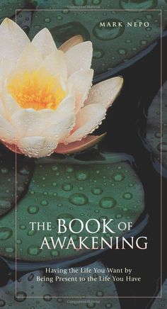 Amazon.com: The Book of Awakening: Having the Life You Want by Being Present to the Life You Have (0645241001173): Mark Nepo: Books