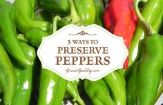 Take advantage of the summer bounty and preserve peppers to enjoy all year. If you don't grow your own peppers, consider purchasing in bulk from local growers at your farmer's market. Fresno Peppers, Fresno Chili, Growing Peppers, Dried Peppers, Canning Vegetables, Growing Vegetables, Canning Recipes, Canning 101, Stuffed Jalapeno Peppers